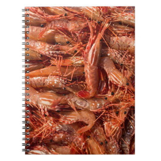 All Prawn and No Brain Notebook