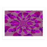 All purple burst pattern of a single repeated rose post card