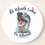 All Roads Lead to Gnome Dog Coaster