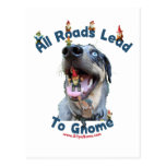 All Roads Lead to Gnome Dog Postcards