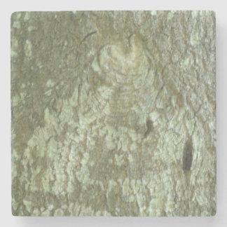 """All Seeing Eye"" Oak Tree Eye Trees Bark Camo Stone Coaster"