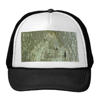 """""""All Seeing Eye"""" Oak Tree Eye Trees Bark Camo Trucker Hat"""