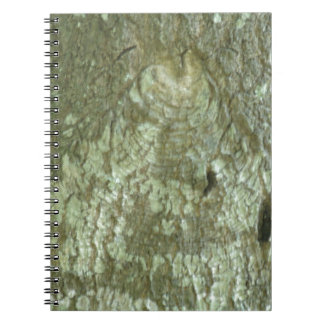 """All Seeing Eye"" Oak Tree Eye Trees Bark Camo Journal"