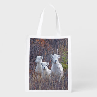 All Sheep Family - Wildlife Bag