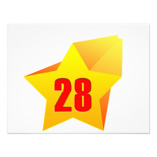 All Star Twenty Eight years old Birthday Personalized Invites