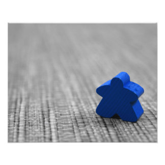 All the Lonely Meeple 16x20 Photo Print