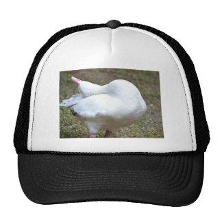 All The Way Back.JPG Trucker Hat