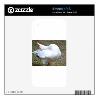 All The Way Back.JPG Skin For The iPhone 4S