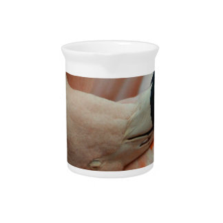 All things Flamingo! Beverage Pitcher
