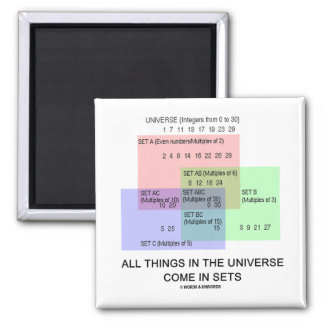All Things In The Universe Come In Sets Fridge Magnet