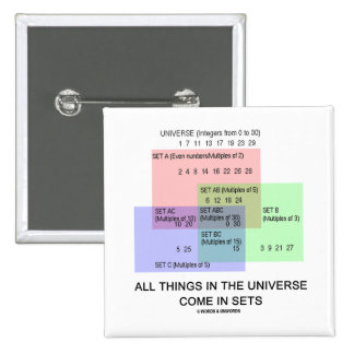 All Things In The Universe Come In Sets Pins
