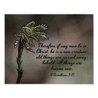 All Things New Budding Leaf Bible Verse Wall Art Poster