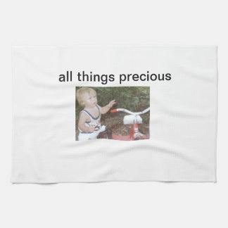 All Things Precious kitchen dish towel