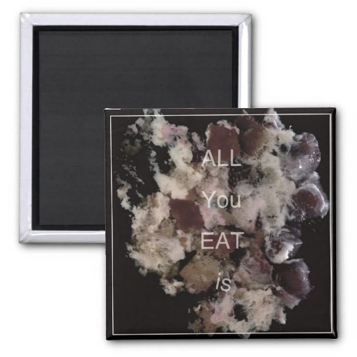 all you eat is_magnet imán cuadrado