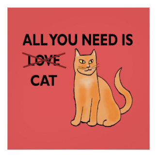 All You Need Is Cat Poster