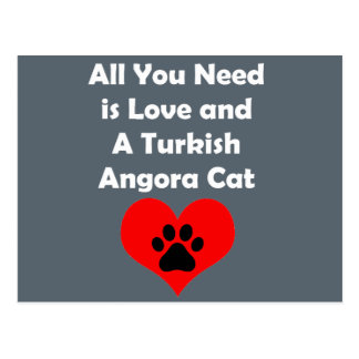 All You Need is Love and A Turkish Angora Cat Postcard