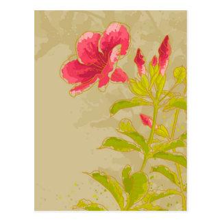 Allamanda Flower On Toned Background Postcard