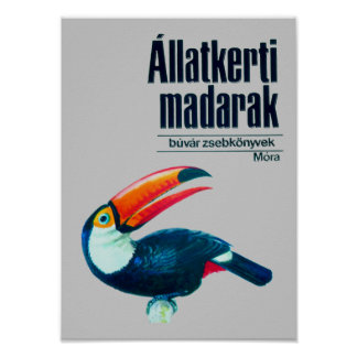 Allatkerti Madarak Print