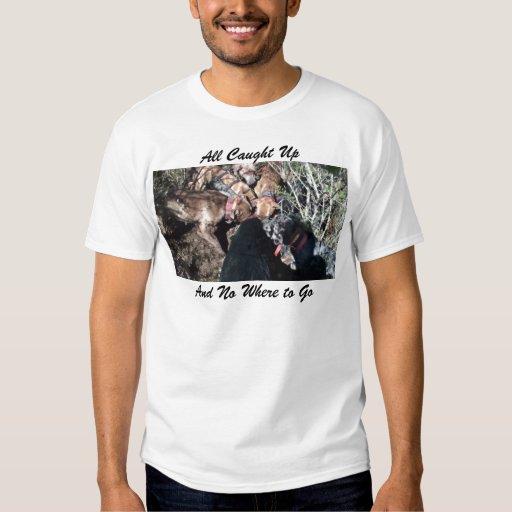 alldogscatch T-Shirt