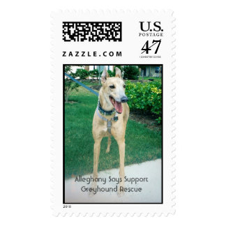 Alleghany Says Support Greyhound Rescue Postage Stamp