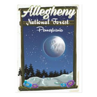 Allegheny National Forest Pennsylvania Postcard