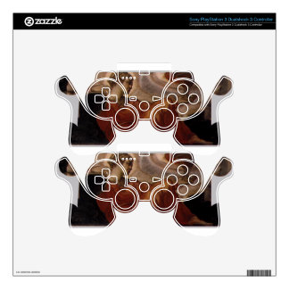 Allegory of Faith by Tintoretto Skins For PS3 Controllers