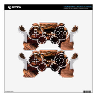 Allegory of Generosity by Tintoretto PS3 Controller Decal