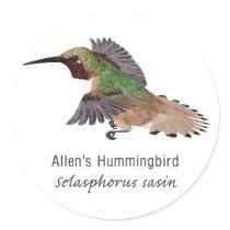 Allen's Hummingbird with Name Classic Round Sticker
