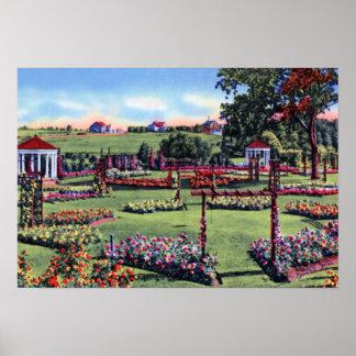 Allentown Pennsylvania Rose Gardens Poster