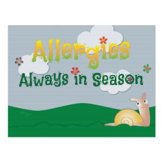 Allergies - Always in Season Postcard