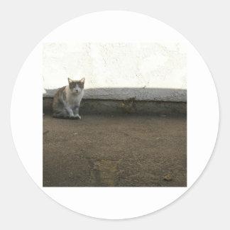 Alley Cat Dusty Days Parking Lot Feline Classic Round Sticker