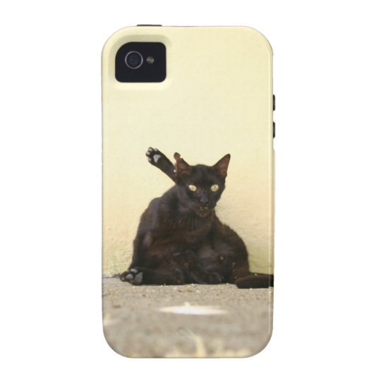 Alley Cat iPhone 4 Case