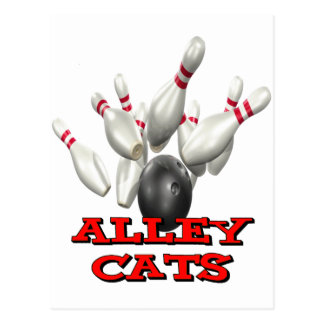 Alley Cats Bowling Postcard