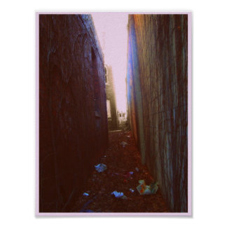 Alley Poster