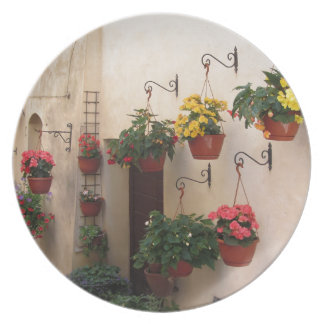 Alley with flowers in old village of Spello, Italy Plate