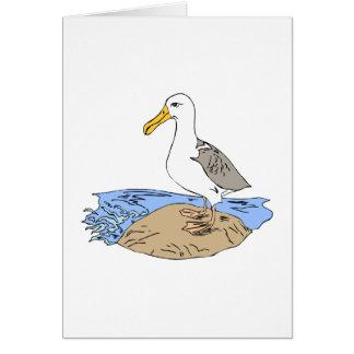Allie Albatross Greeting Cards