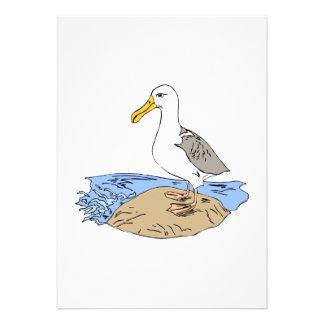 Allie Albatross Personalized Invite