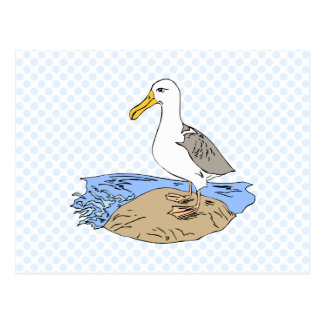 Allie Albatross Postcard