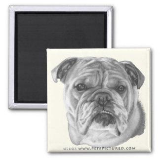 Allie, Bulldog 2 Inch Square Magnet