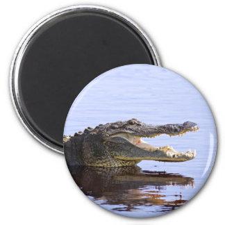 Alligator 2 Inch Round Magnet