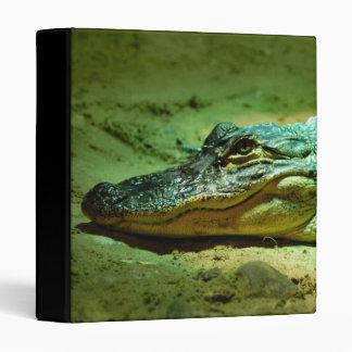 Alligator 3 Ring Binder