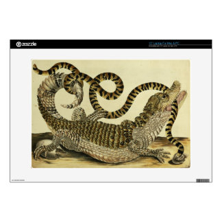 "Alligator and Snake, 1730 (coloured engraving) 15"" Laptop Skin"