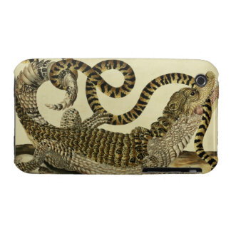 Alligator and Snake, 1730 (coloured engraving) iPhone 3 Cases