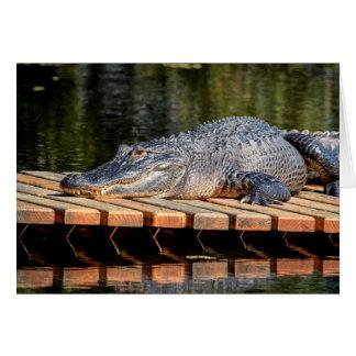 Alligator at Homosassa Springs Wildlife State Park Card