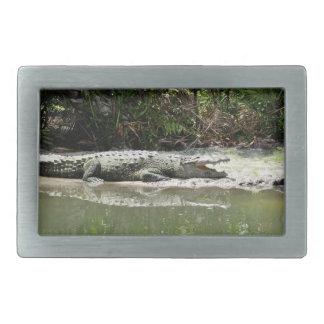 Alligator Belt Buckle