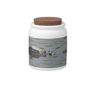 Alligator Candy Jars