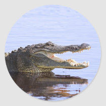 Alligator Classic Round Sticker