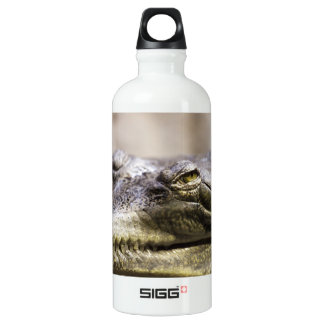 Alligator closeup photo aluminum water bottle