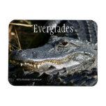 Alligator, Everglades Ntl. Park Rectangular Photo Magnet