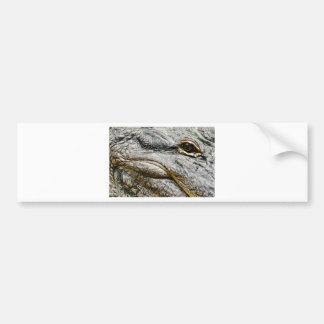 Alligator eye bumper sticker